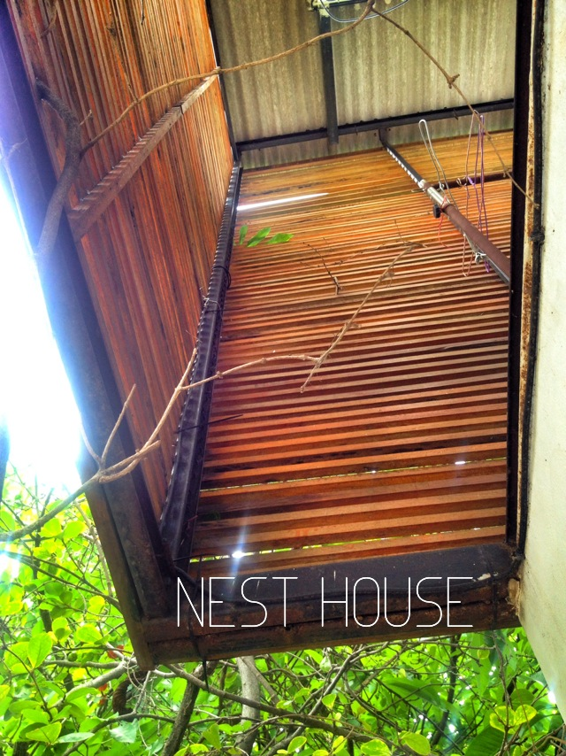 NEST HOUSE in BANGKOK 2